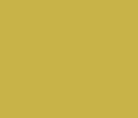 dental beauty dedication icon